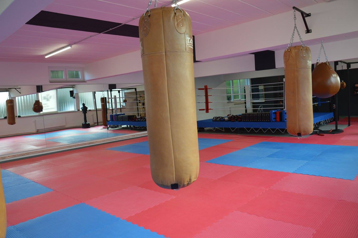 BKF Bünde Boxsäcke und Gym