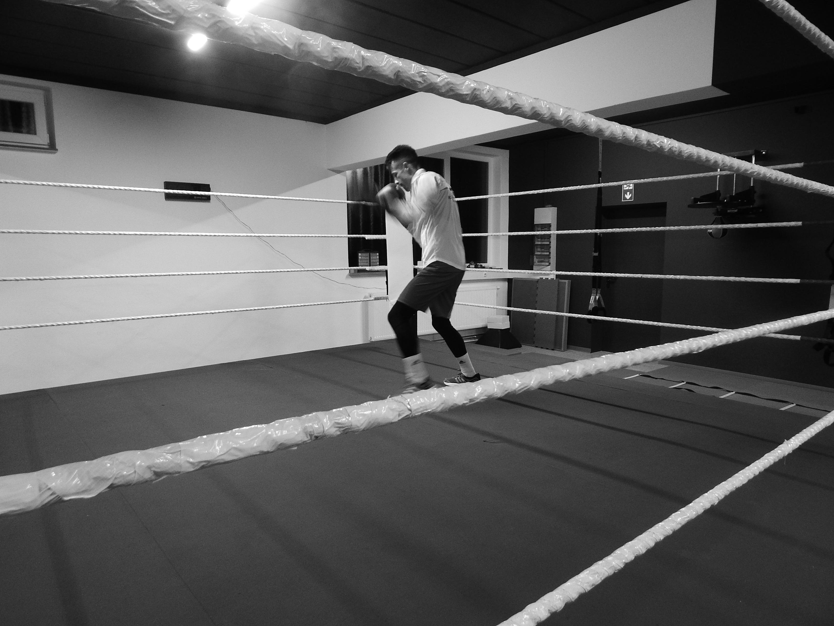 Der Boxring